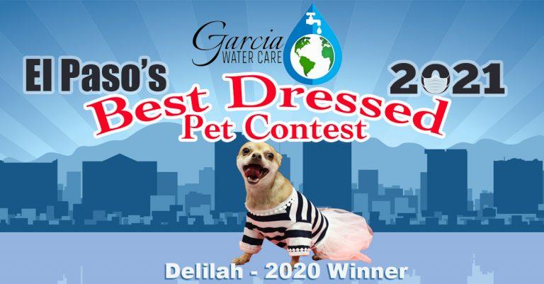 best-dressed-pets-2021