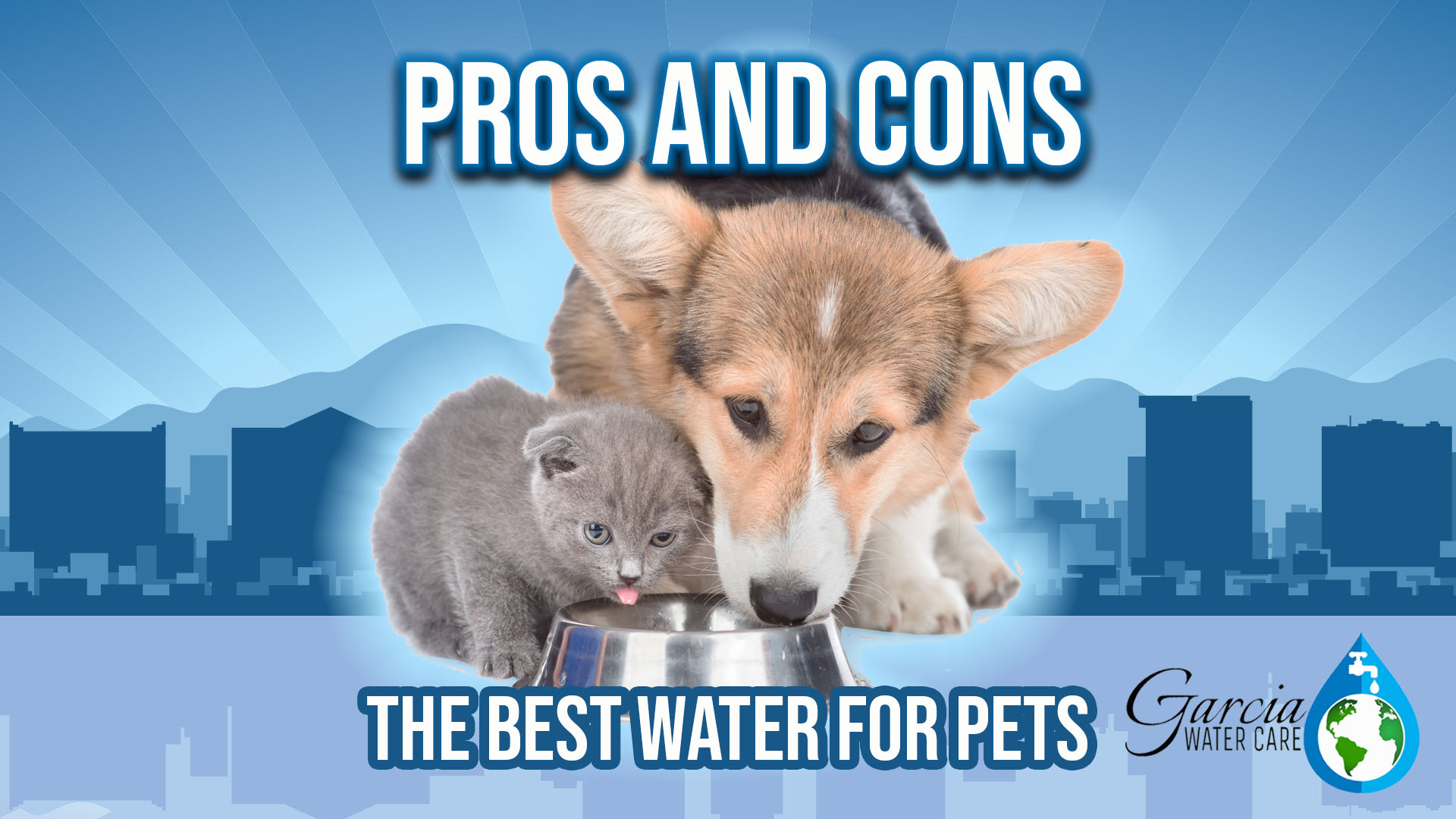 Pros and cons of giving your pets various drinking sources for their water